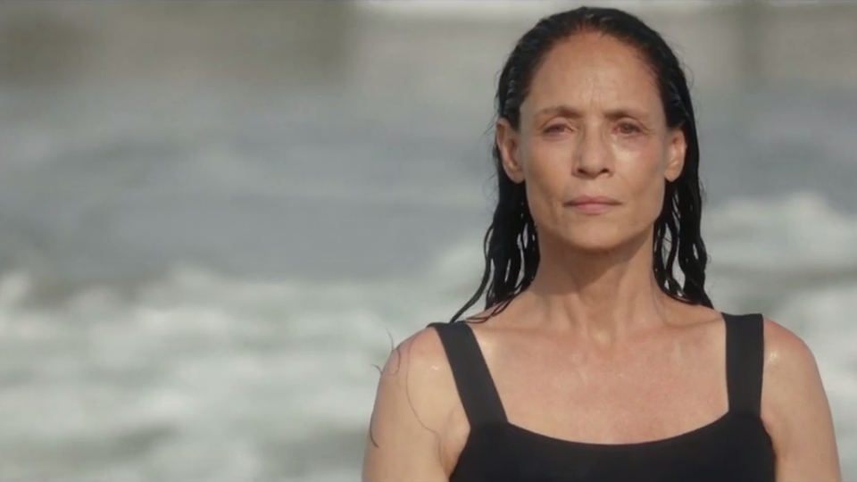 Image result for SONIA BRAGA AQUARIUS